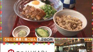 北海道放送(HBC)「今日ドキッ!」で蕎麦HIKARIが紹介されました!