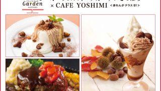9/15~24日 札幌駅すぐそばのCAFE YOSHIMIをご利用のお客様に国内線航空券が当たるチャンス!!