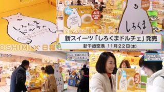 2018年12月9日の北海道放送(HBC)『サンデーDokiっと!』で『しろくまドルチェ』が紹介されました!